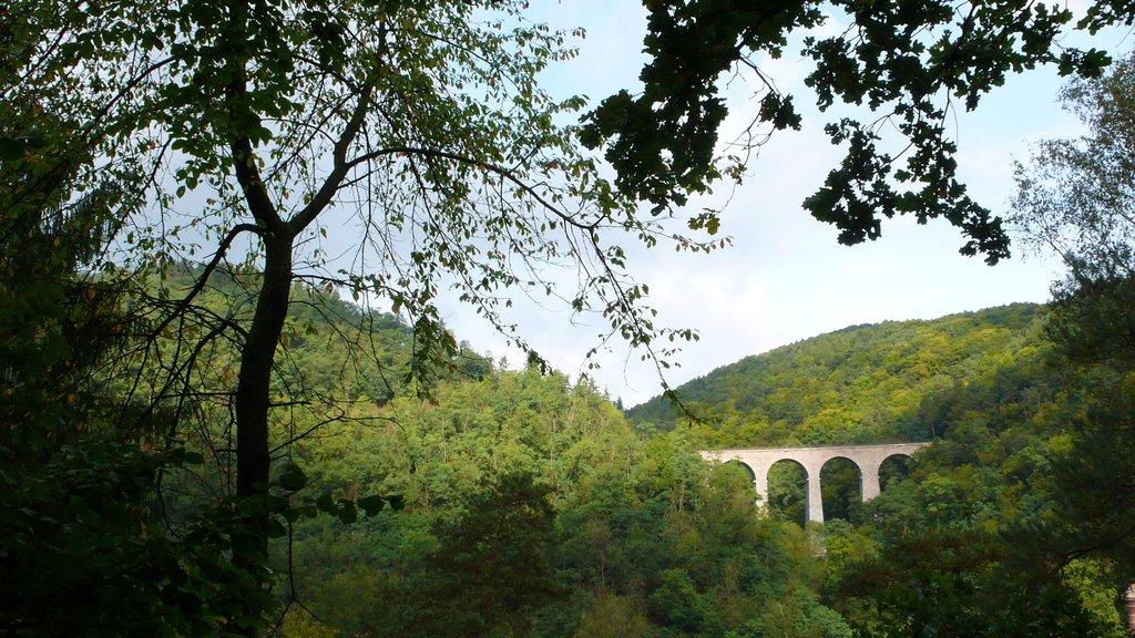 Zampach railway bridge